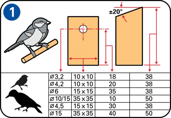 Realizza Con Il Legno La Tua Casetta Nido Per Uccelli